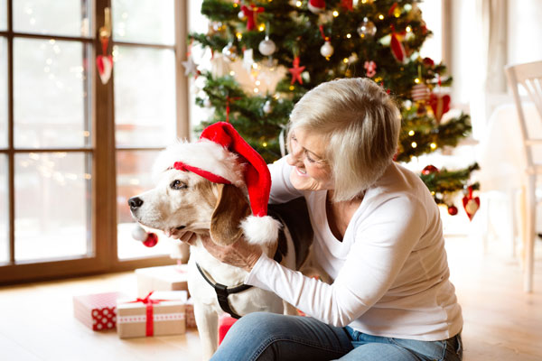 How to Have a Happy and Healthy Holiday for Your Pet [InfoGraphic]