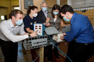 Device enables world's first voluntary gorilla blood pressure reading